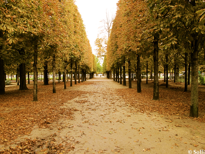 Jardin des Tuileries, October - Paris