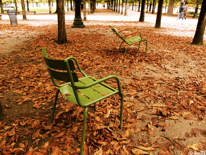 Jardin des Tuileries, October - Paris