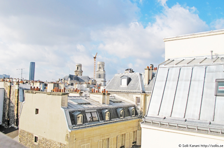 View from my window in my apartment at Boulevard Saint Germain, Paris