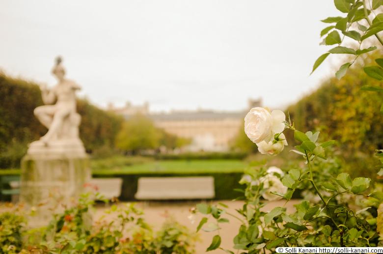 jardin-du-palais-royal-003