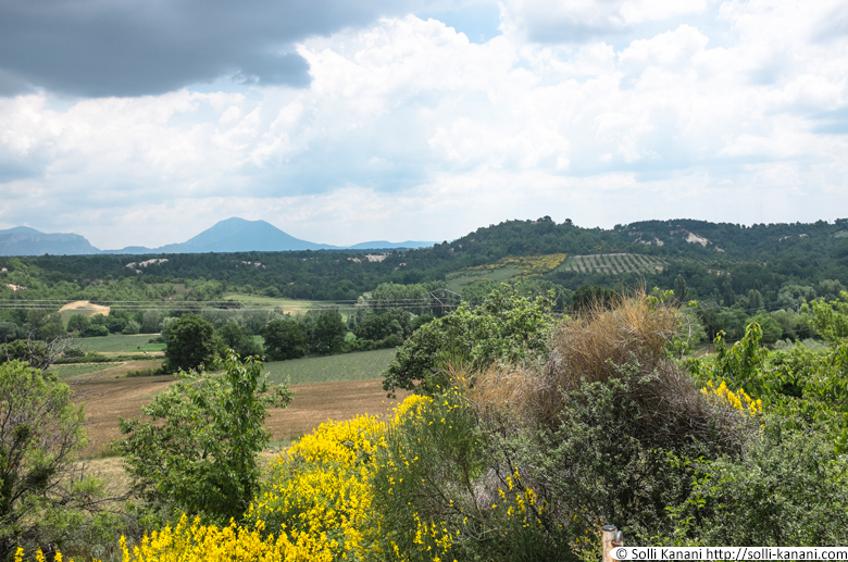 provence-0020