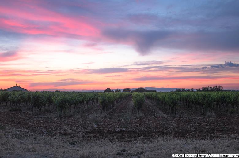 sunset-provence-1