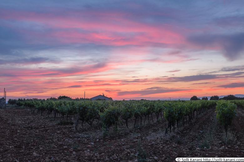 sunset-provence-2