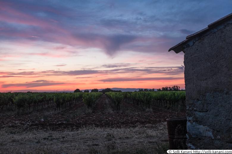 sunset-provence-4