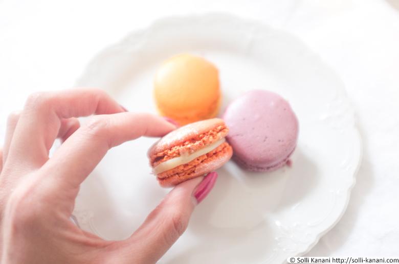 arnaud-lahrer-macarons