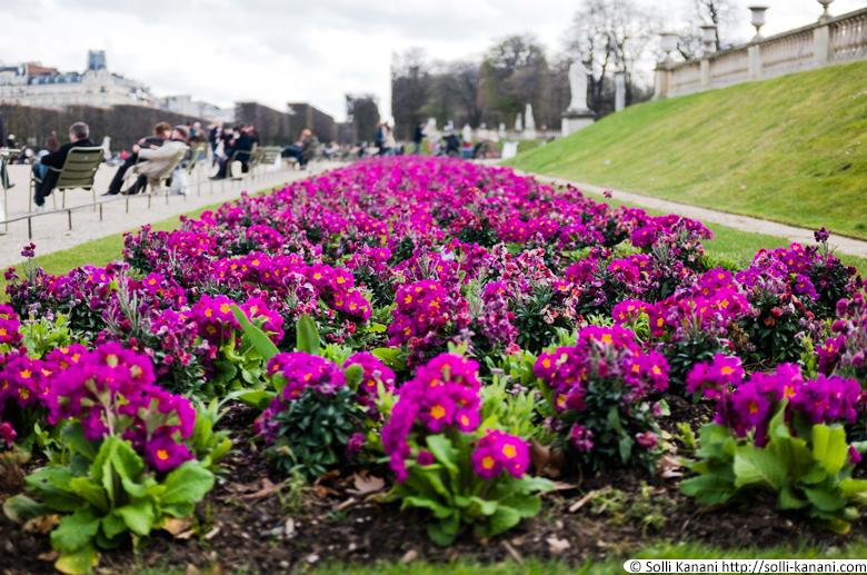 jardin-du-luxembourg-005