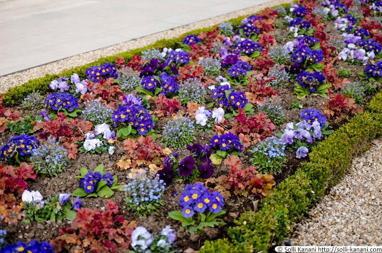 printemps-jardin-du-luxembourg-004