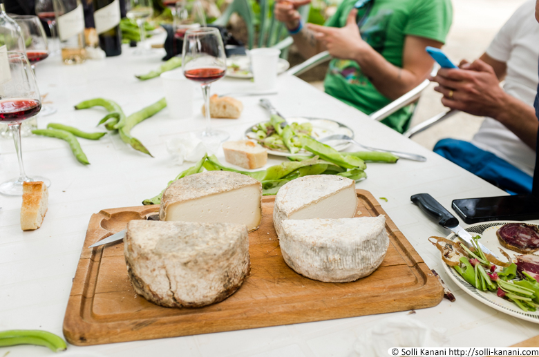 fromage-corse-1