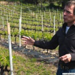 Jules Celli, the owner of Petra di Mela guiding us on his vineyard