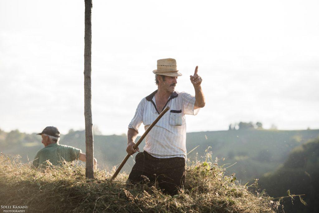 Hay scythe Romania