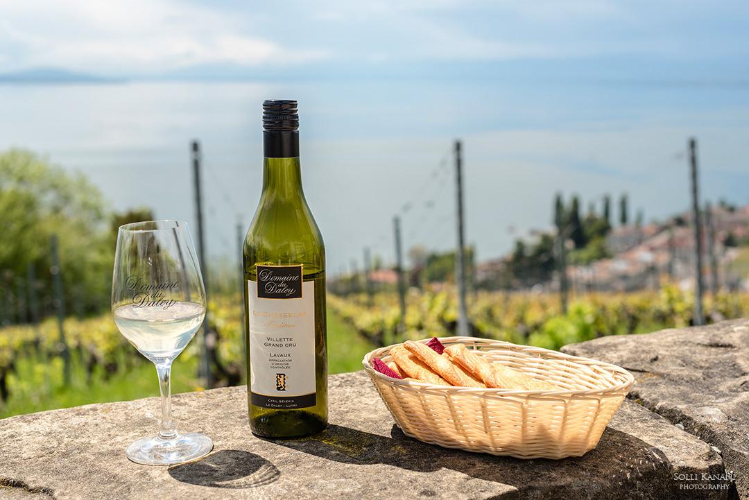 Wine tasting in Lavaux