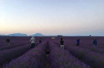 Provence Photo Workshop