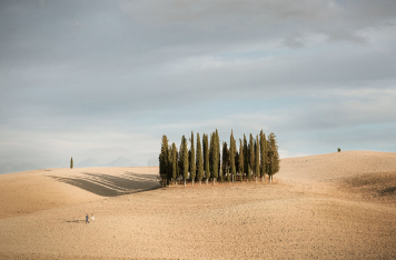 Tuscany Photo Workshop