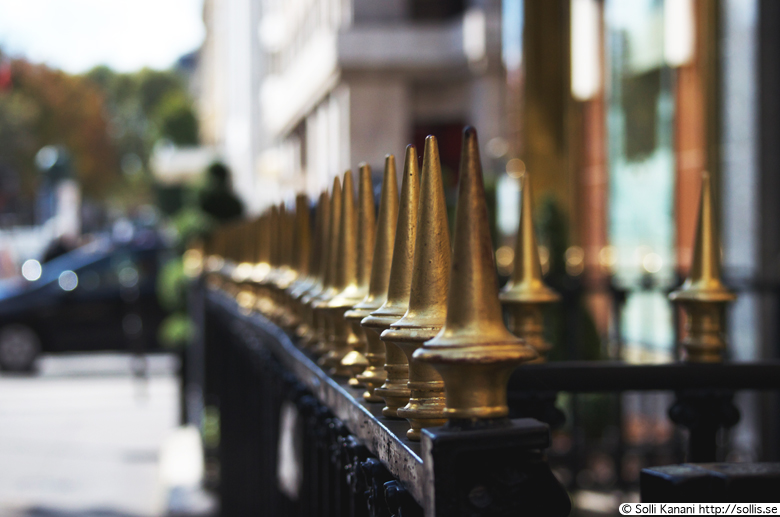 Gilded fence in Paris