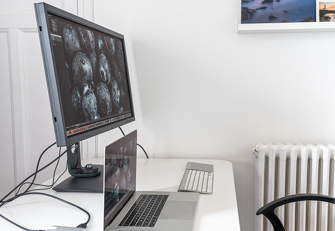 Review of a monitor for photographers - BenQ SW321C